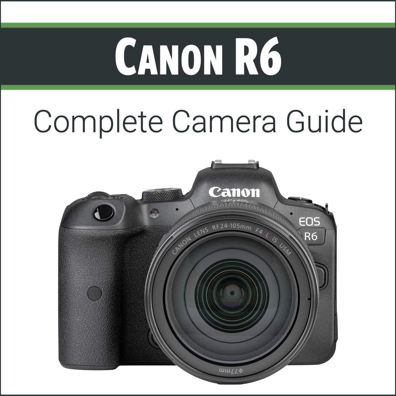 Canon R6: Complete Camera Guide
