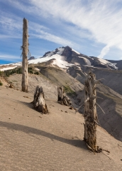 Landscape-Mount-Hood-summer-john-greengo