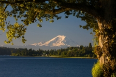 Landscape-Mount-Rainer-view-from-seattle-john-greengo