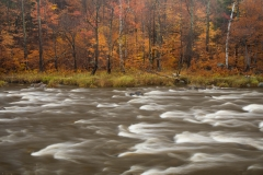 Landscape-river-motion-fall-trees-john-greengo