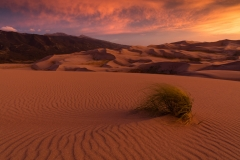 Landscape-sand-dunes-grass-john-greengo