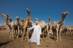 People-Egyptian-Man-with-Camels-herding-John-greengo